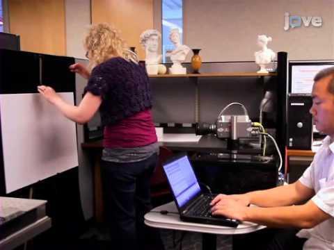 Tutorials on creating 3D structured scanner