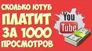 Сколько можно заработать на YouTube c 1000 подписчиков