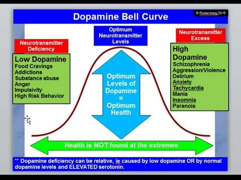 COMT and MAO: How Diet Influences Dopamine and Adrenalin Levels