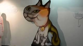 Кошка,которая всегда смотрит на тебя