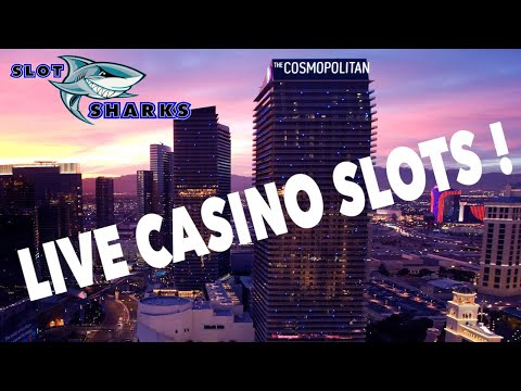 Enjoy Your Own On the net Casino With Real Cash