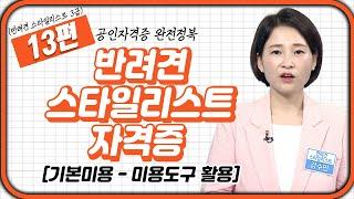 반려견 스타일리스트 1…