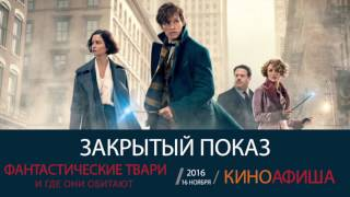 Премьера фильма «Фантастические твари и где они обитают» в СИНЕМА ПАРК Санкт-Петербург