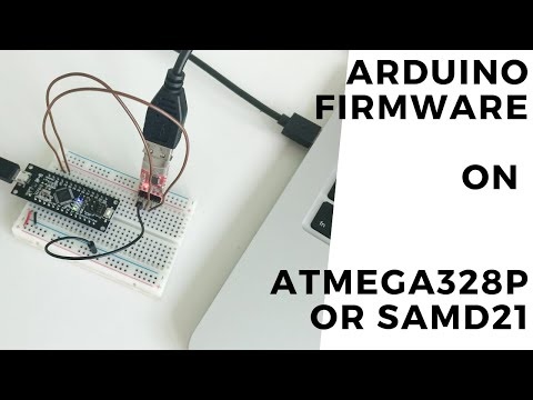 Arduino firmware on ATmega328p or SAMD21 - YouTube