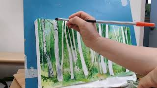 자작나무2