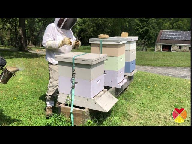 SNACC's Virtual Field Trip: Keeler Honey Farm