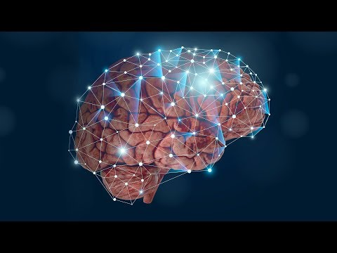 Where does long-term memory come from?