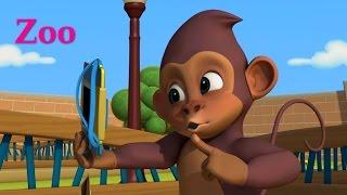 Английский язык для малышей - Мяу-Мяу - Zoo! (Зоопарк) – Мультфильм детям - учим английские слова
