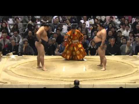 Mongolian Sumo Hero Kakuryu Highlight Mix (Mar 2014)