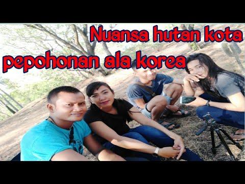 vlog-wisata-hutan-kota-palu