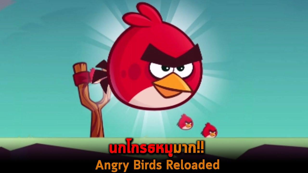 นกโกรธหมูมาก Angry Birds Reloaded