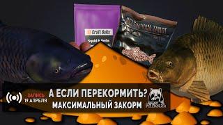 Можно ли перекормить Рыбу прикормом в Русской Рыбалке 4