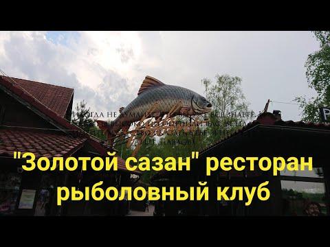 """Ресторан """"Золотой сазан"""" рыболовный клуб"""