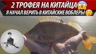 2 ТРОФЕЙНЫХ ОКУНЯ НА КИТАЙСКИЙ ВОБЛЕР. Рыбалка в Польше.Ловля окуня на спиннинг. Ловля на воблеры