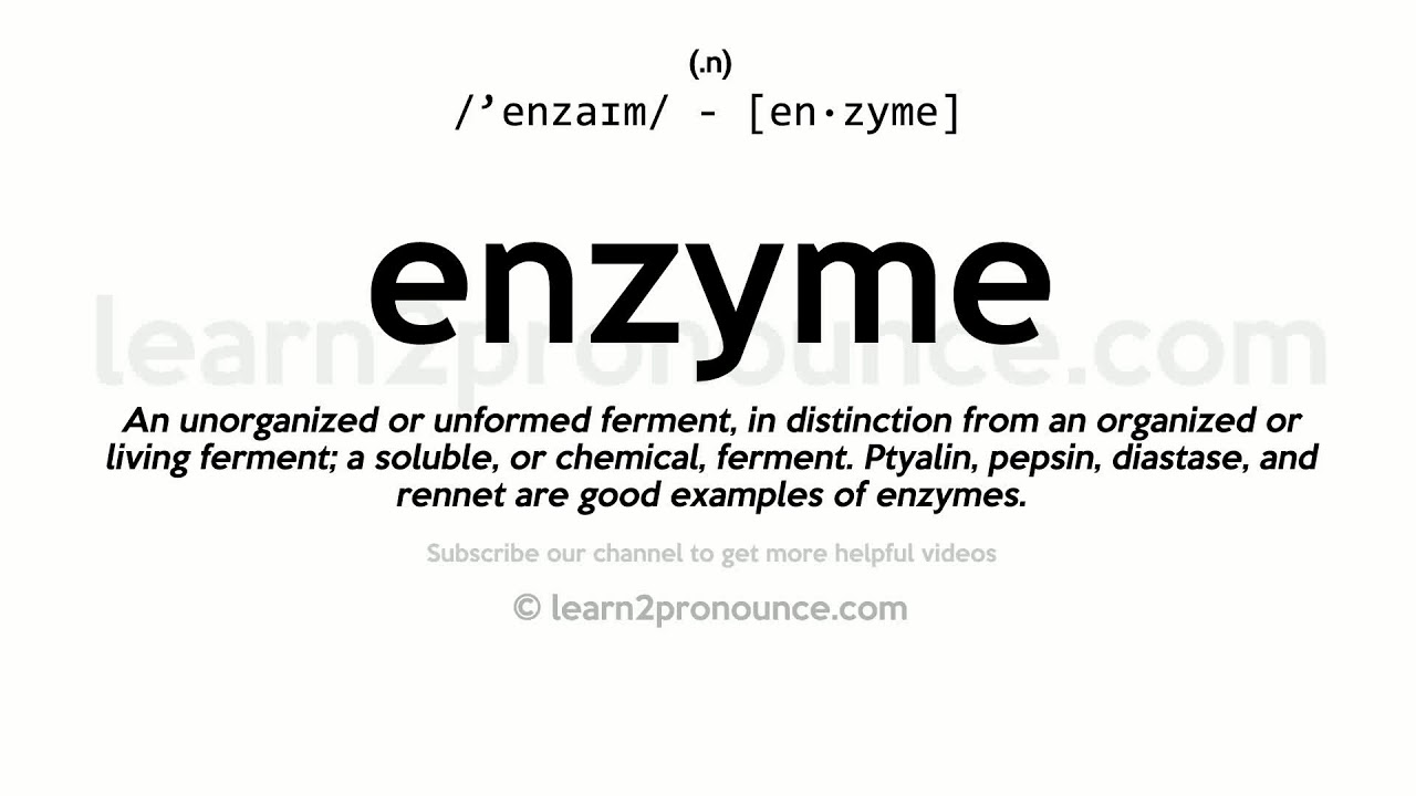 Pronunciation of Enzyme  Definition of Enzyme