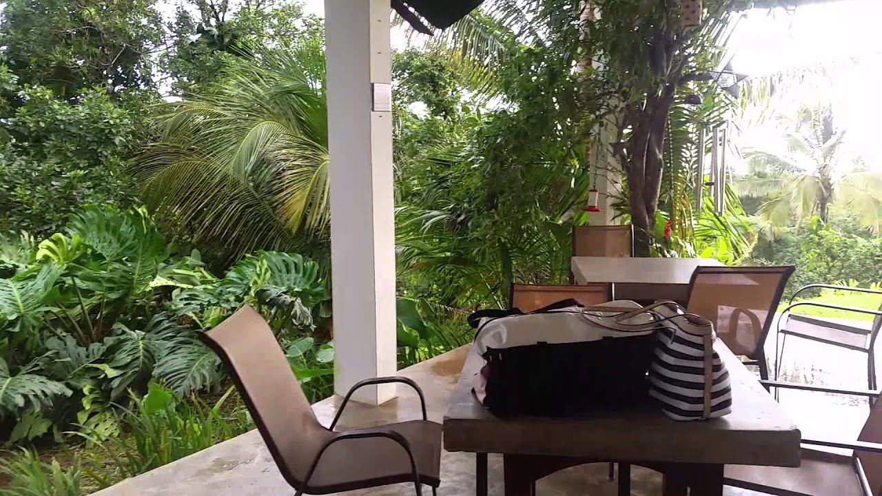 el hotelito at rainforest, fajardo pr - youtube