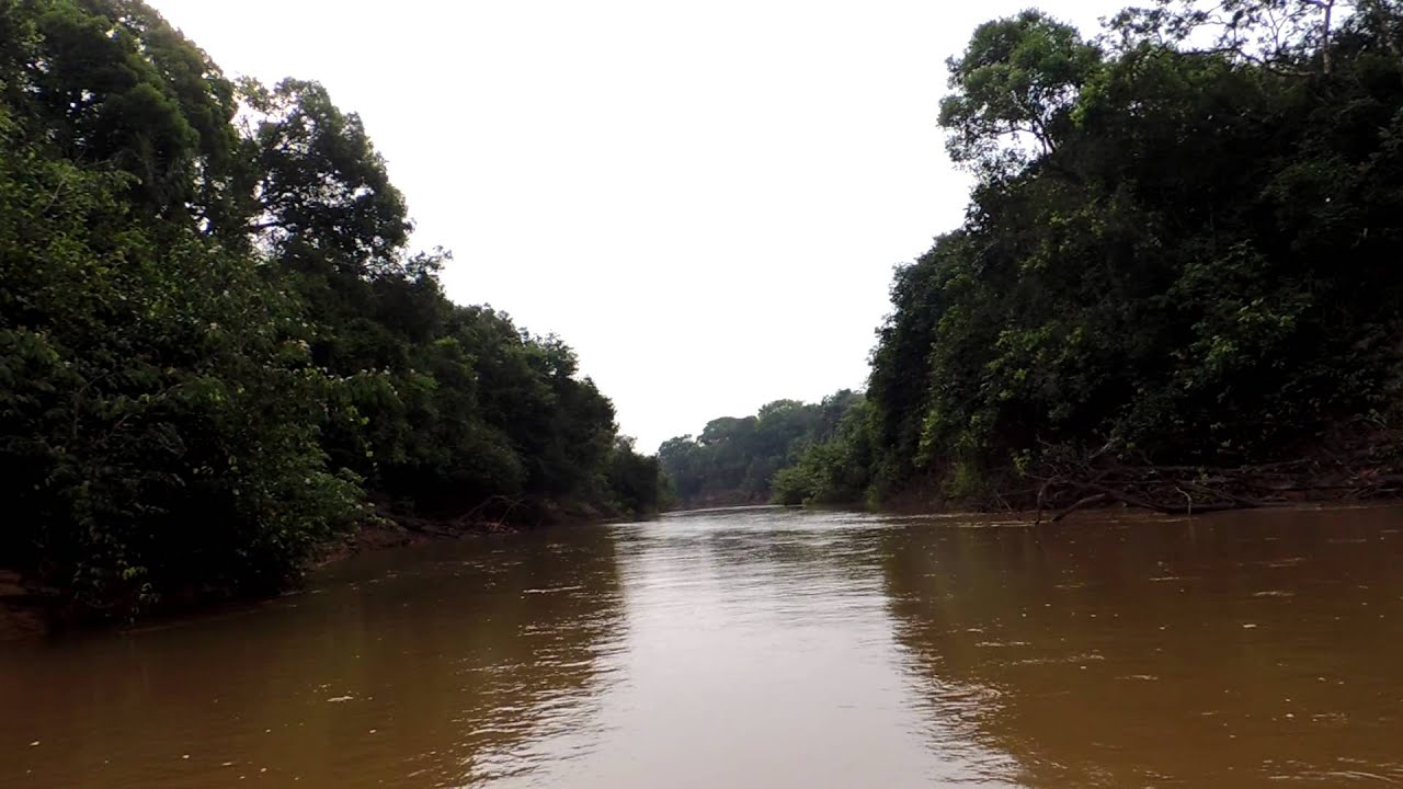 Orinoco River Guaviare River ...