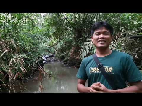 Rilis bibit nilem agar lestari sungai indonesia thumbnail