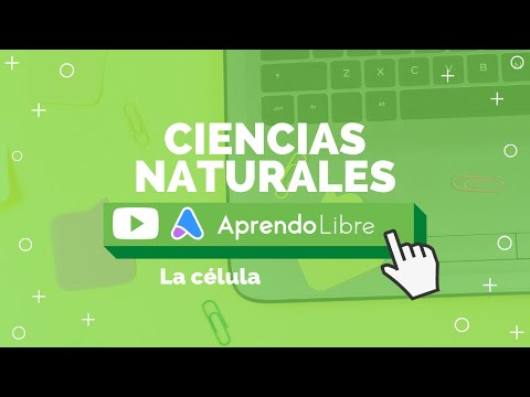 ciencias-naturales-|-la-célula-|-5º-básico-(11-12-años)