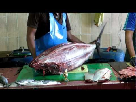 Tuna cleaned at Male, Maldives fish market