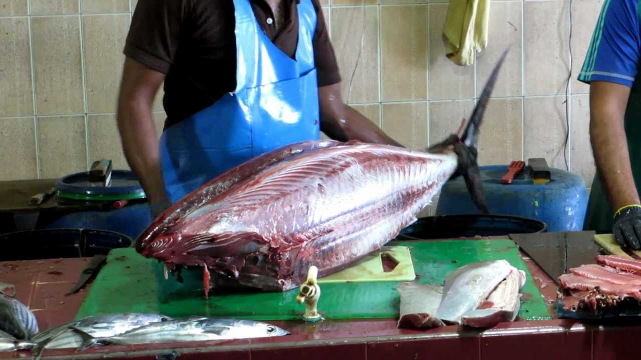 Tuna cleaned at Male, Maldives fish market - YouTube