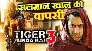 RACE 3 के बाद Salman Khan की Tiger Zinda Hai 3 से होगी वापसी