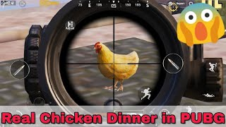 How to find chicken dinner (hen) and ghillie suit in PUBG mobile