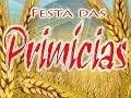 Download Festa das Primícias - 500 graus MP3 song and Music Video