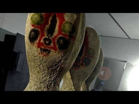 SCP: The Musical D Boys