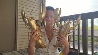 💥383-Người đàn ông có nhiều Cu..a mạ vàng Nhất St. Louis