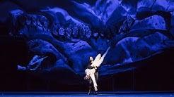 Illusionen – wie Schwanensee / Ballett von John Neumeier