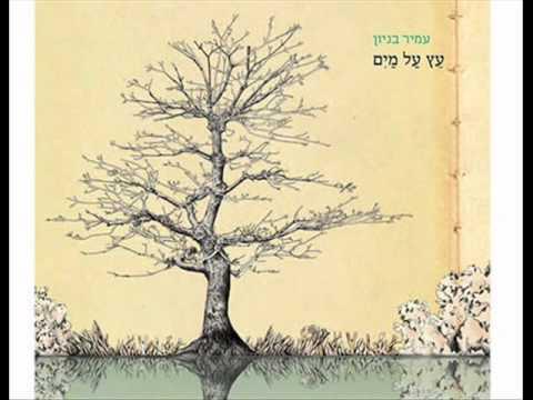 עמיר בניון מלך בשדה (תודה) Amir Benayoun