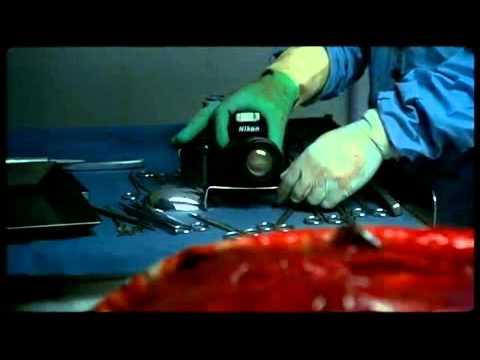 AFTERMATH ( 1994 ) TRAILER