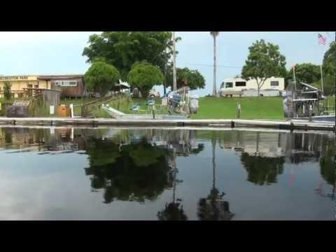 martin-air-boat-rides-huge-alligators-sawgrass-recreation-park,-fort-lauderdale,florida