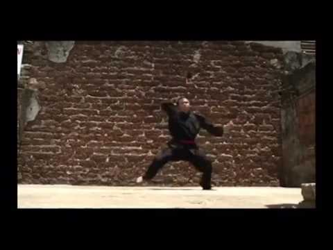 Binh Dinh Kung Fu Traditional Part 1