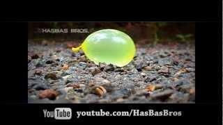 The Science of Balloon Blasting [HasBas Bros.]