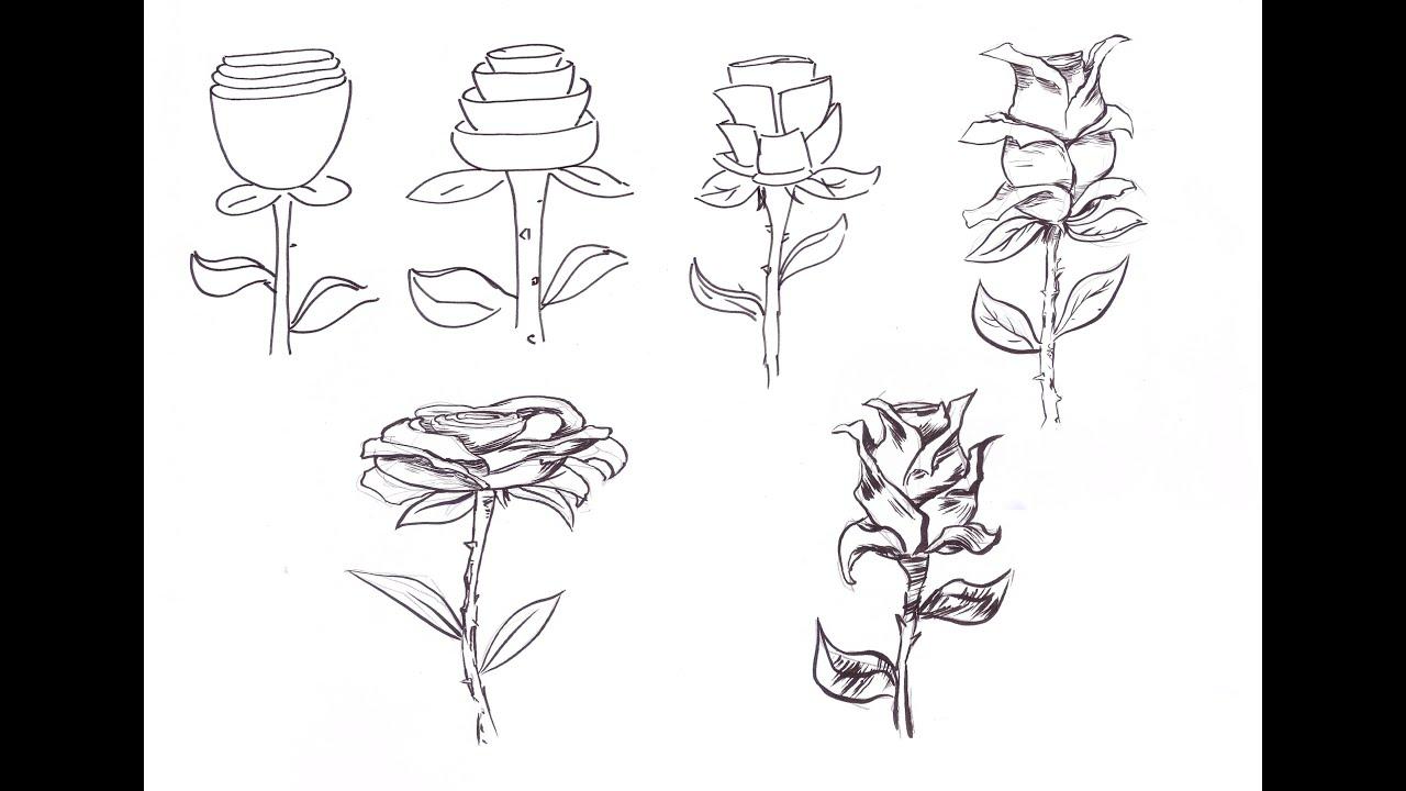 How To Draw / COMO DIBUJAR ROSAS (Javier Díaz)