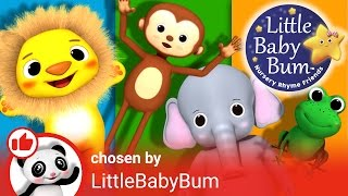 Animals Curated Playlist Intro! | Nursery Rhymes | By Learn with Little Baby Bum