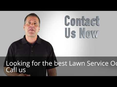 Lawn Service Odessa