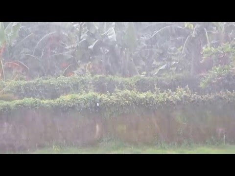 Rain in Batangas Manila, Philippines