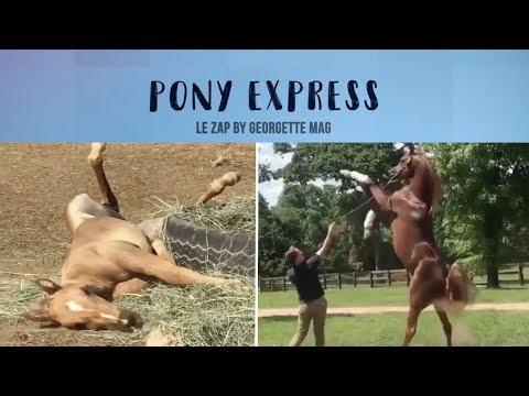 Pony Express #5 : pépouze dans le foin et oxer au ralenti !