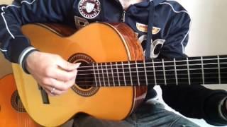 Tocar la guitarra: Para bailar la bamba