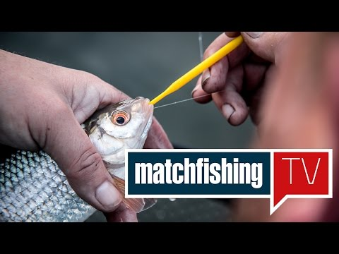 Match Fishing TV - Episode 46