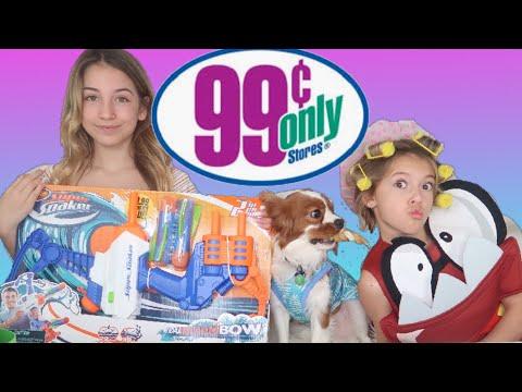 99 Cent Store Challenge   Kids Haul   Quinn Sisters