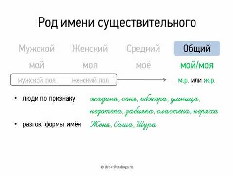 Как определить род заимствованных слов