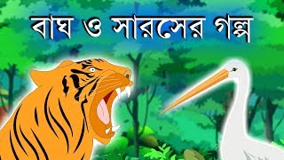 The tiger and the stork | The tiger and bone story