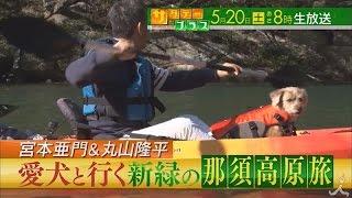 土曜あさ8時 『サタデープラス』5月20日の放送は、マグロの町 和歌山県...