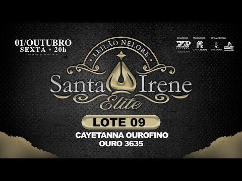 Lote 09   CAYETANNA OUROFINO   OURO 3635
