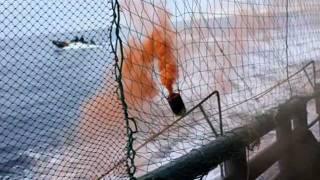 February 11, 2012  Zodiacs Attack Yushin Maru # 2 With Smoke Bombs, Ropes and Butyric acid