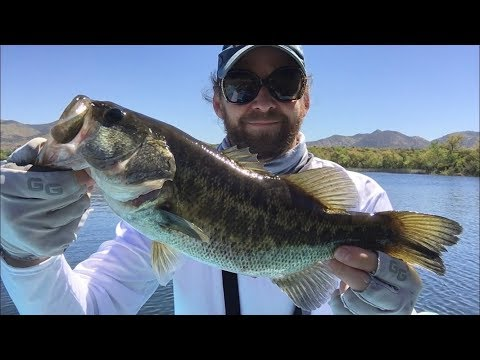Lake Skinner Bass Fishing!